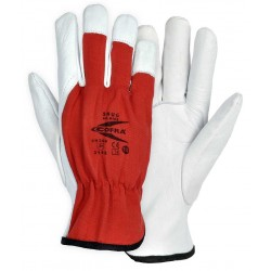 GUANTES COFRA SNUG (Pack 12 uts.)